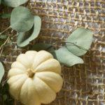 Call Me Pumpkin: 5 Recipes