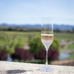 Our Favorite Winery Tours in Napa Valley