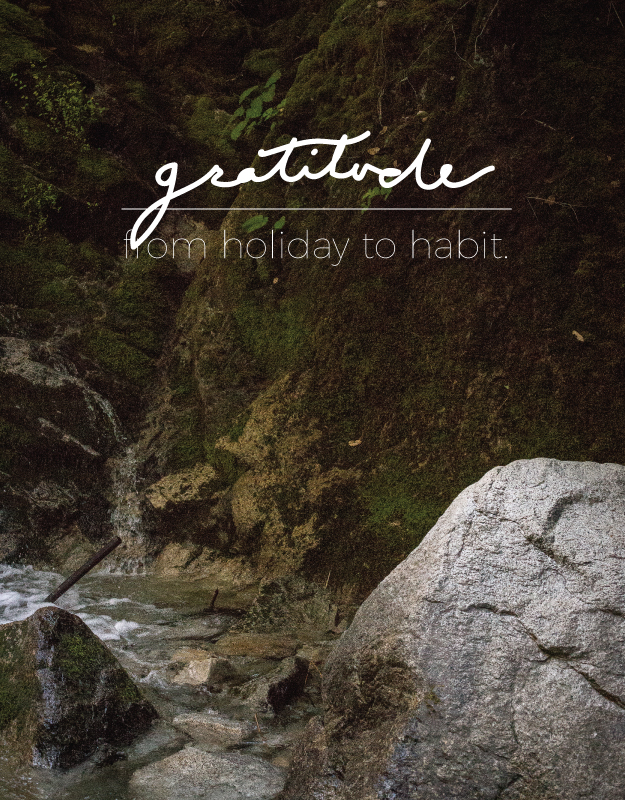 gratitude from holiday to habit